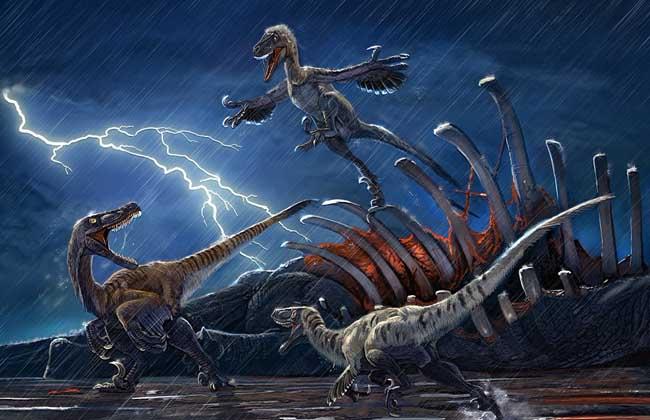 恐龙的资料