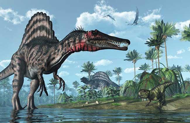 棘龙是最厉害的恐龙吗?
