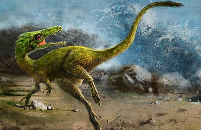 恐爪龙的资料和图片