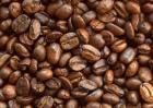 咖啡的故乡是哪里?