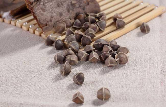 辣木籽的功效与作用