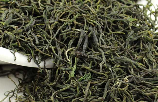 毛尖是绿茶吗