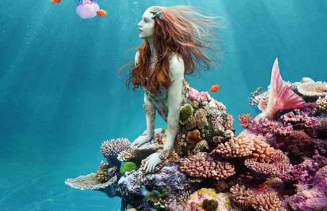 美人鱼之谜