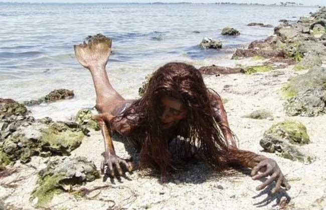 美人鱼真身吓人图片