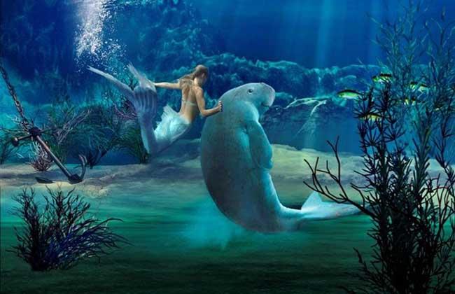 美人鱼是什么生物
