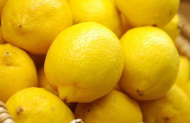 柠檬品种图片