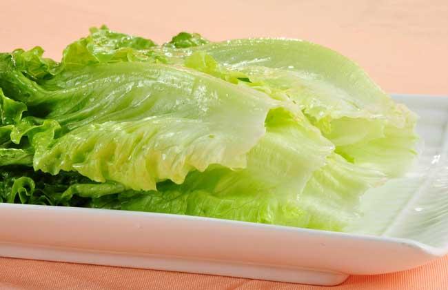 生菜是酸性还是碱性