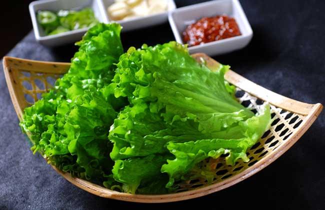 生菜是转基因的吗?