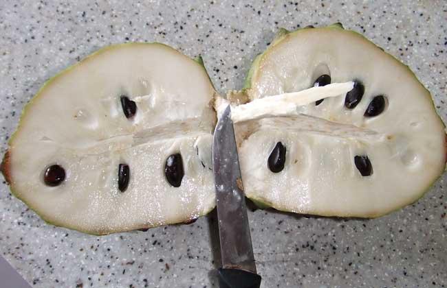 孕妇可以吃番荔枝吗