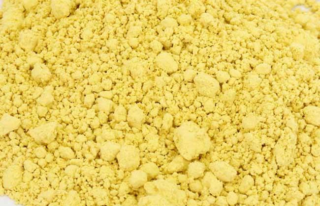 破壁松花粉的功效与作用