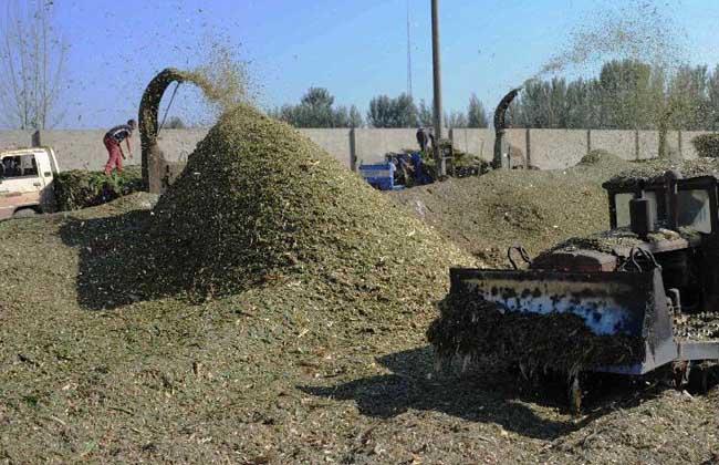 玉米秸秆青储技术