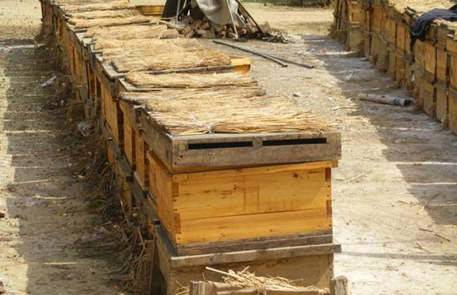 蜂箱的制作方法