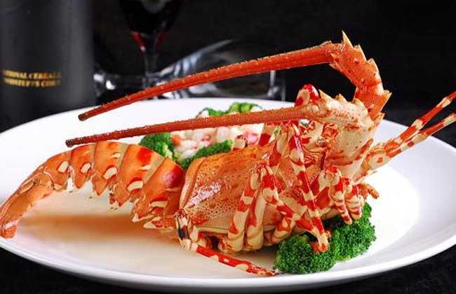 澳洲龙虾多少钱一斤