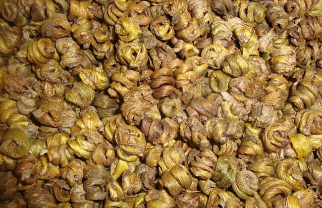金钗石斛多少钱一斤