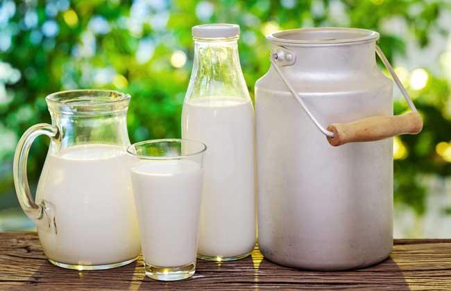 牛奶的营养价值