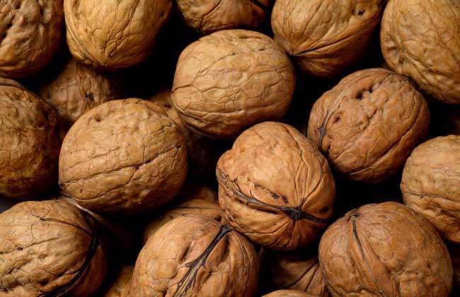 核桃是碱性食品吗?