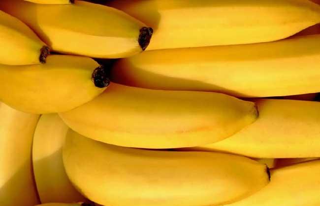 生香蕉如何催熟?