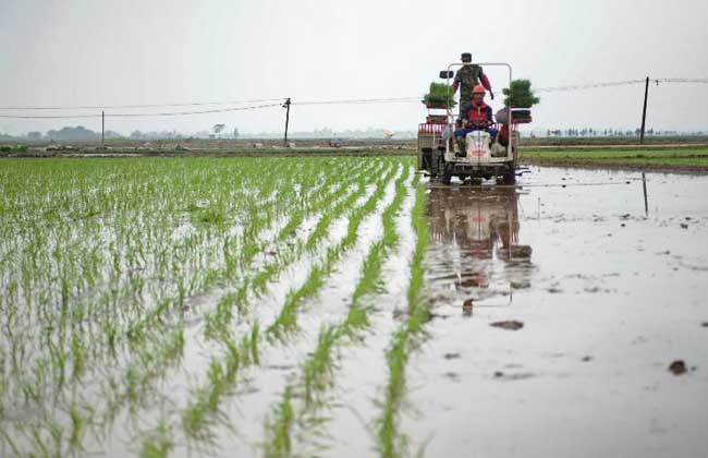 农业合作社补贴和优惠政策