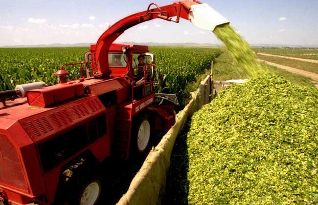 农业贷款的申请条件