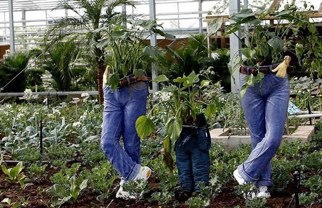 国外创意农业的五种模式