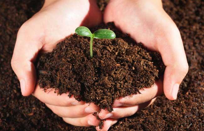 土壤污染的分类和防治