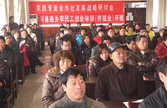 农民工返乡创业政策