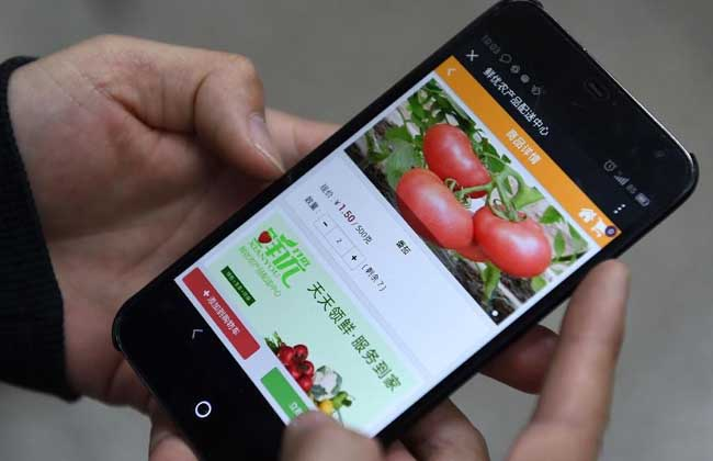 农业电子商务模式