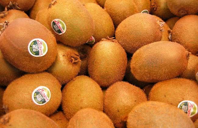 猕猴桃能不能减肥?