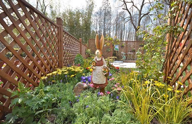 家庭园艺DIY