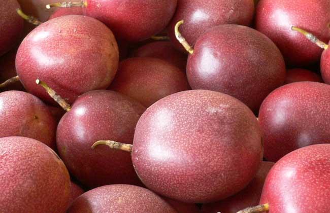 百香果可以减肥吗