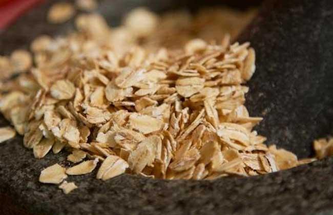 血钻野燕麦价格多少钱