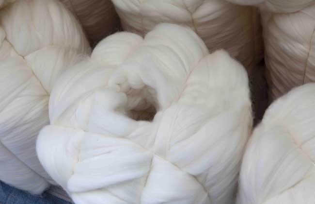 羊毛和羊绒的区别