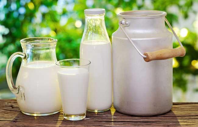 牛奶好还是羊奶好
