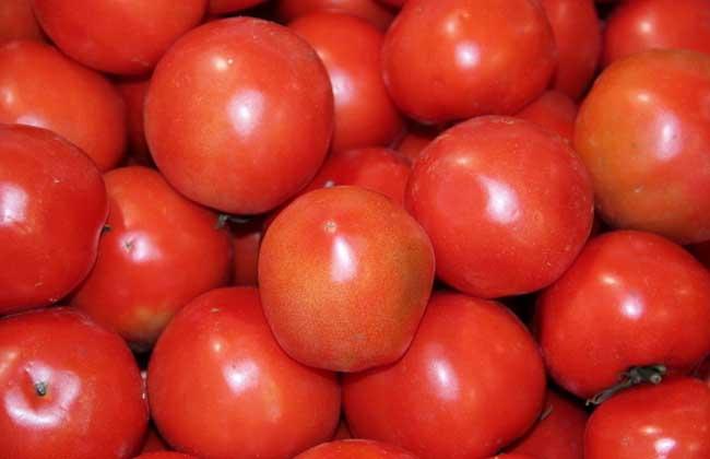 番茄面膜的做法