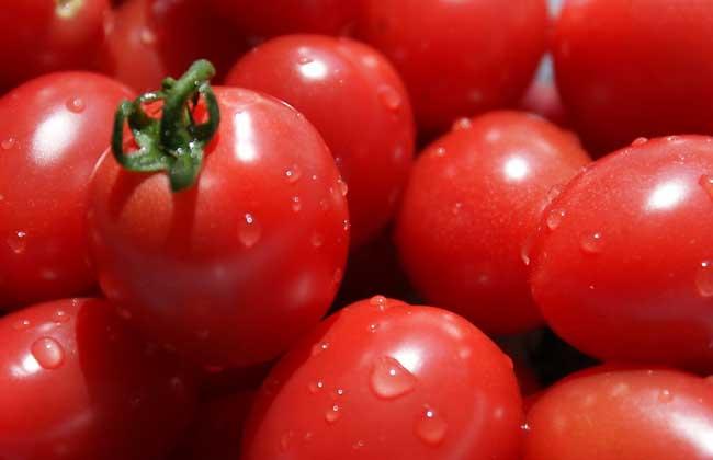 晚上吃西红柿好吗