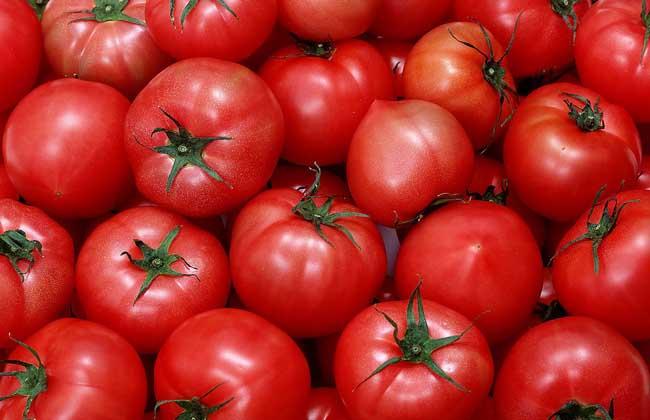 西红柿能生吃吗?