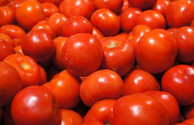 西红柿吃多了好吗?
