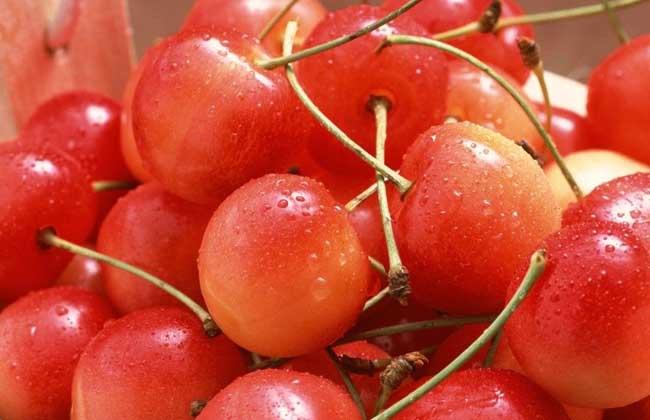 糖尿病人能吃樱桃吗