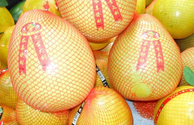 吃柚子可以减肥吗?