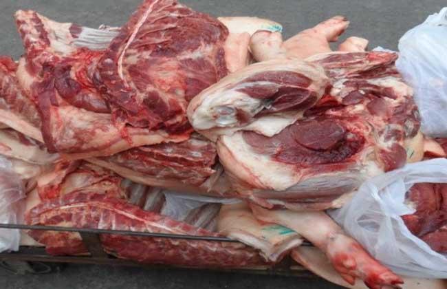 母猪肉能吃吗
