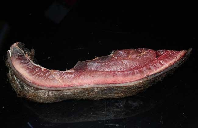 野猪肉怎么做好吃?