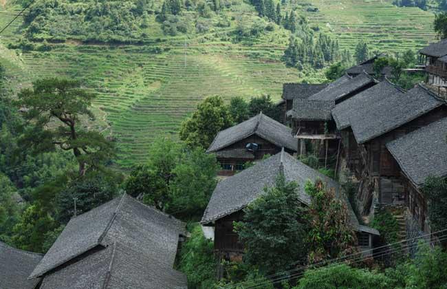 农村创业致富好门路