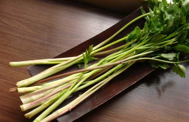 水芹菜的功效与作用