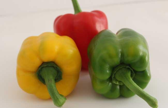 彩椒的营养价值