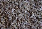 骨粉是什么东西?