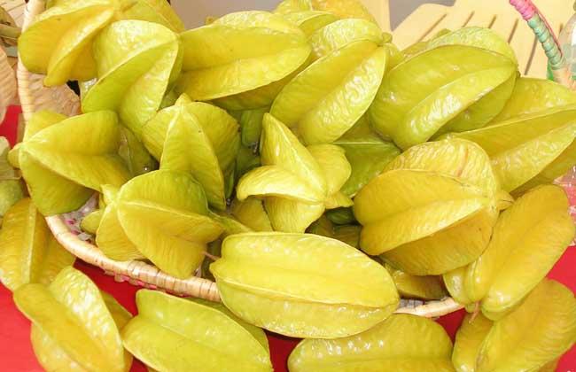 杨桃的营养价值