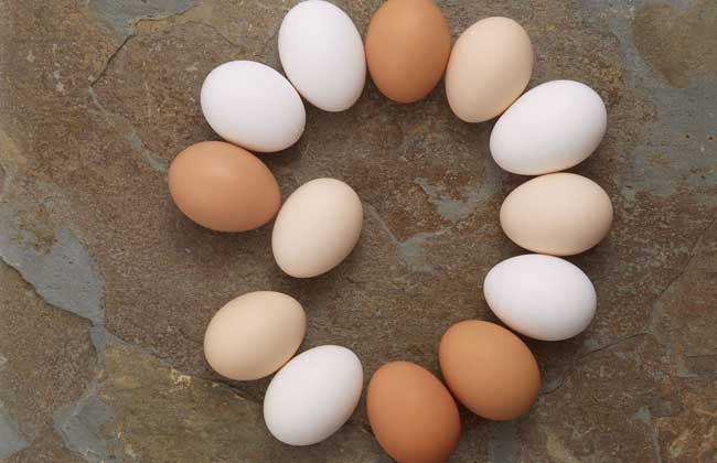 鸡蛋期货开户怎么办理?