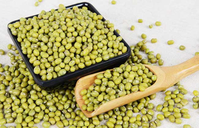 孕妇可以喝绿豆汤吗