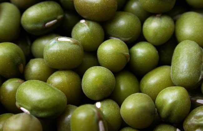 绿豆不能和什么一起吃?