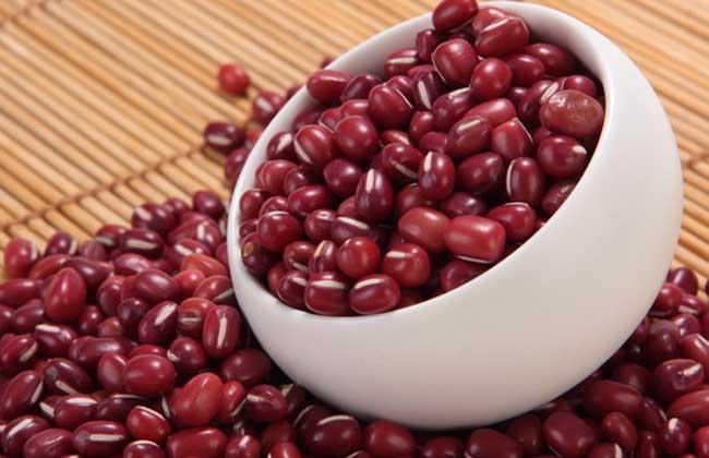 红小豆的功效与作用